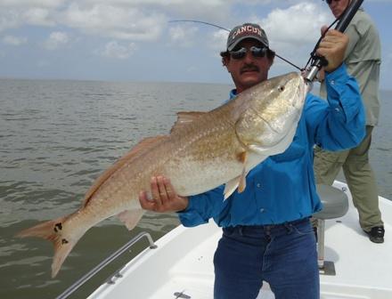 Venice Louisiana Fishing Reports